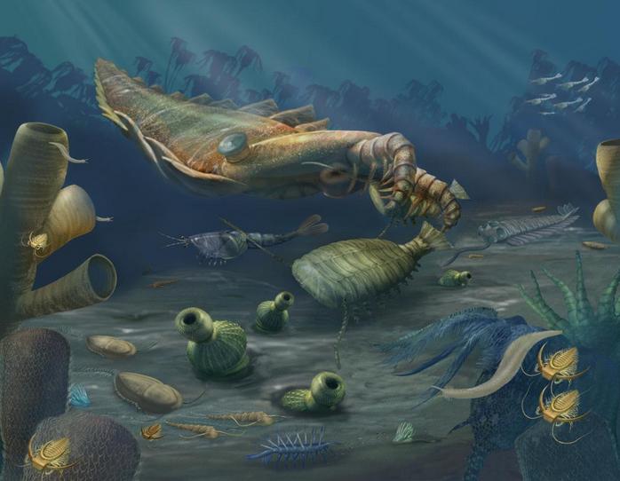 ocean.si.edu
