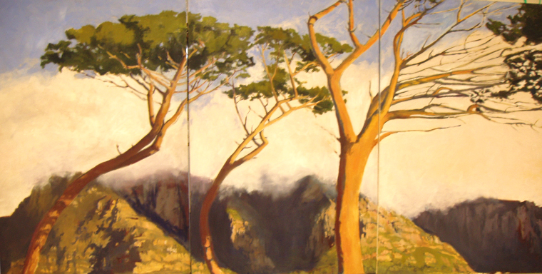 South African Trees - Jessica Blum