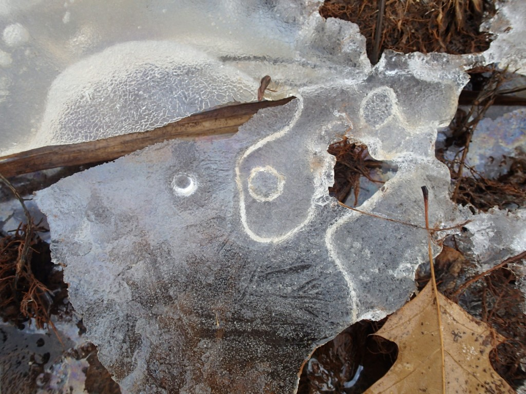 Frozen pieces of art