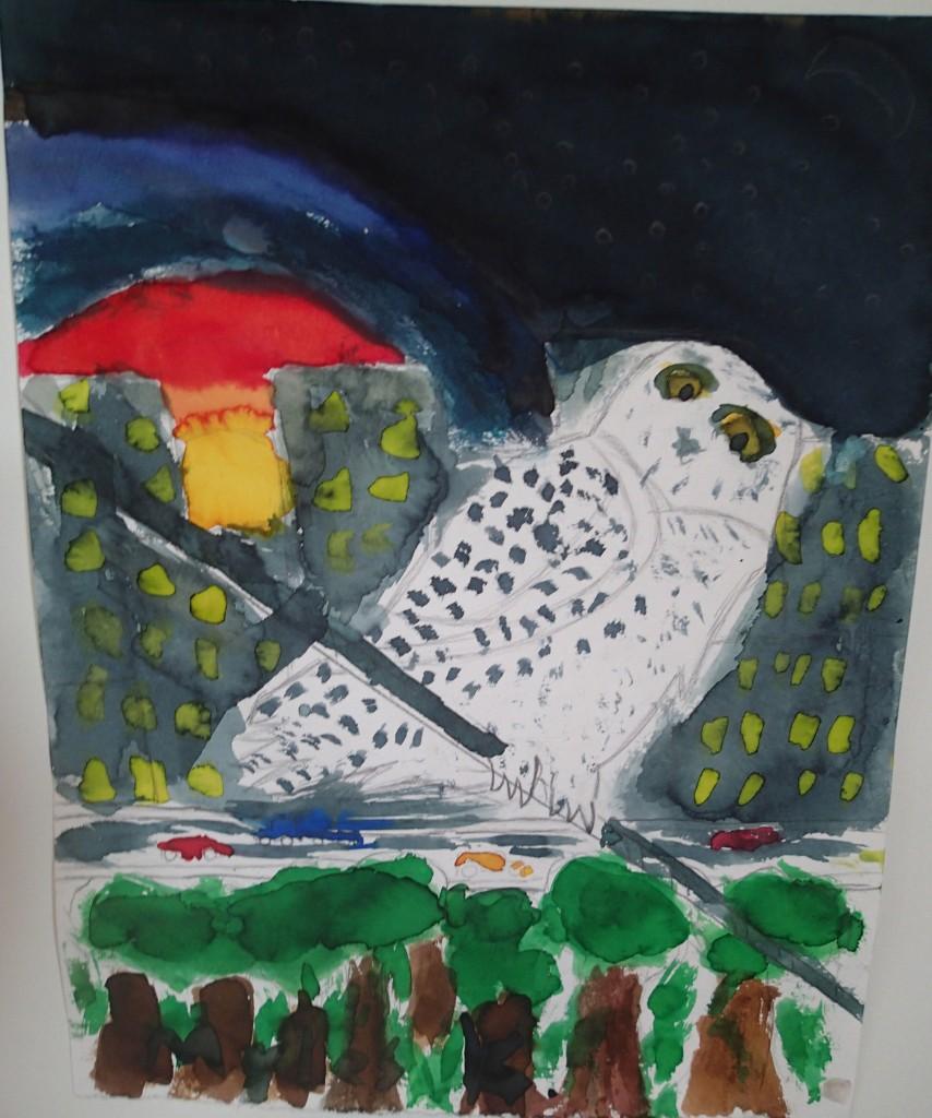 Snowy Owl by  Matthew Mehr