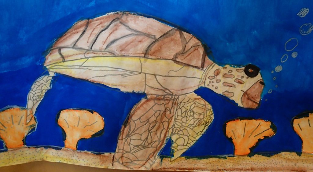 Abby Sikora Green Sea Turtle